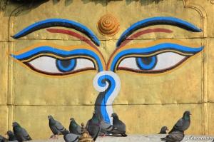 Ojos de Nepal